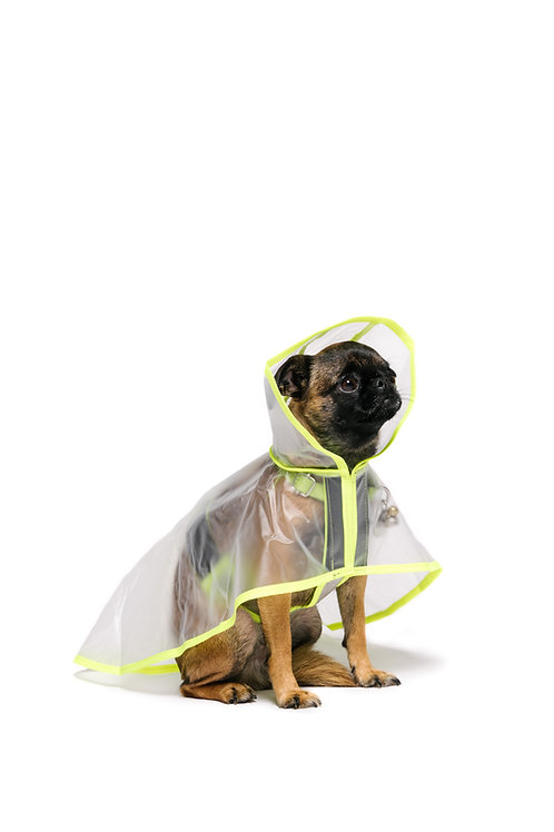 Don Raincoat