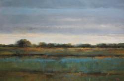 Blue Soybean Fields