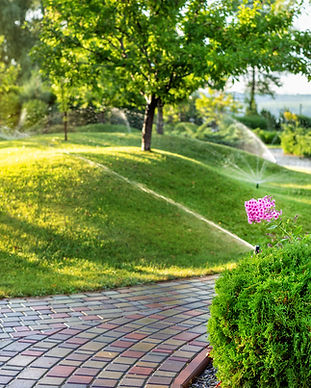 Automatic garden watering system with different sprinklers installed under turf. Landscape