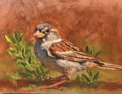 Sparrow 5x7.jpg