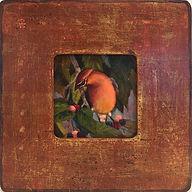 VENETIAN FRAME - Cedar Waxwing.jpg