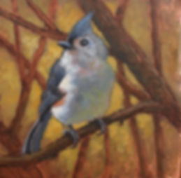 Tufted Titmouse 4x4.jpg