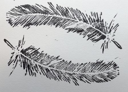 feather print.jpg