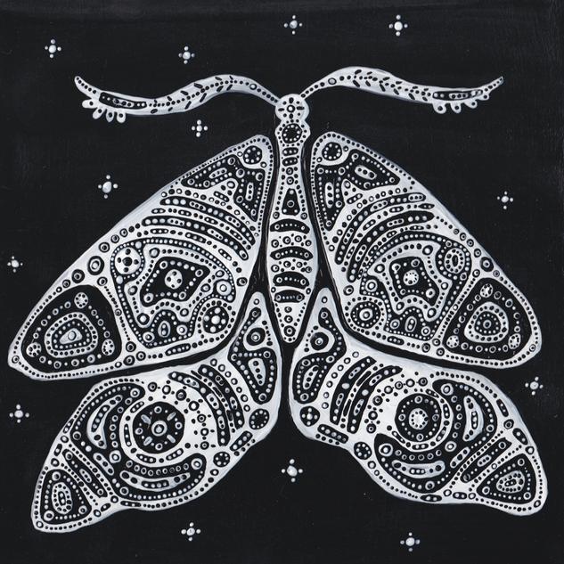 Moth_20201015_0001.png