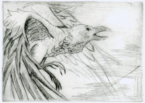 crow_zinc_plate_1_by_mongoosedog_-d3a70f