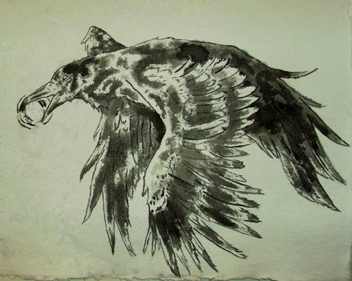 Father_Crow_by_MongooseDog_.jpg