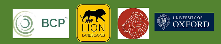 Lion carbon Partners: BioCarbon Partners, the Lion Recovery Fund, National Geographic's Big Cats Initiative and the Darwin Initiative