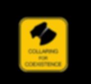 LL_collaring_for_coexistance_blackbackgr