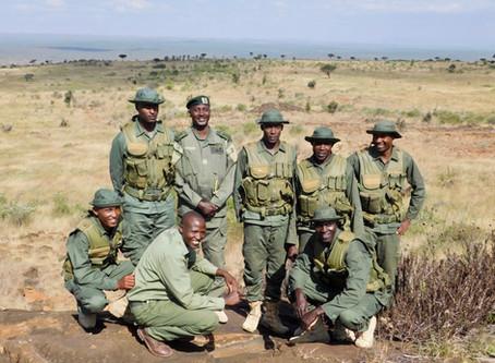 Lion Landscapes Rangers