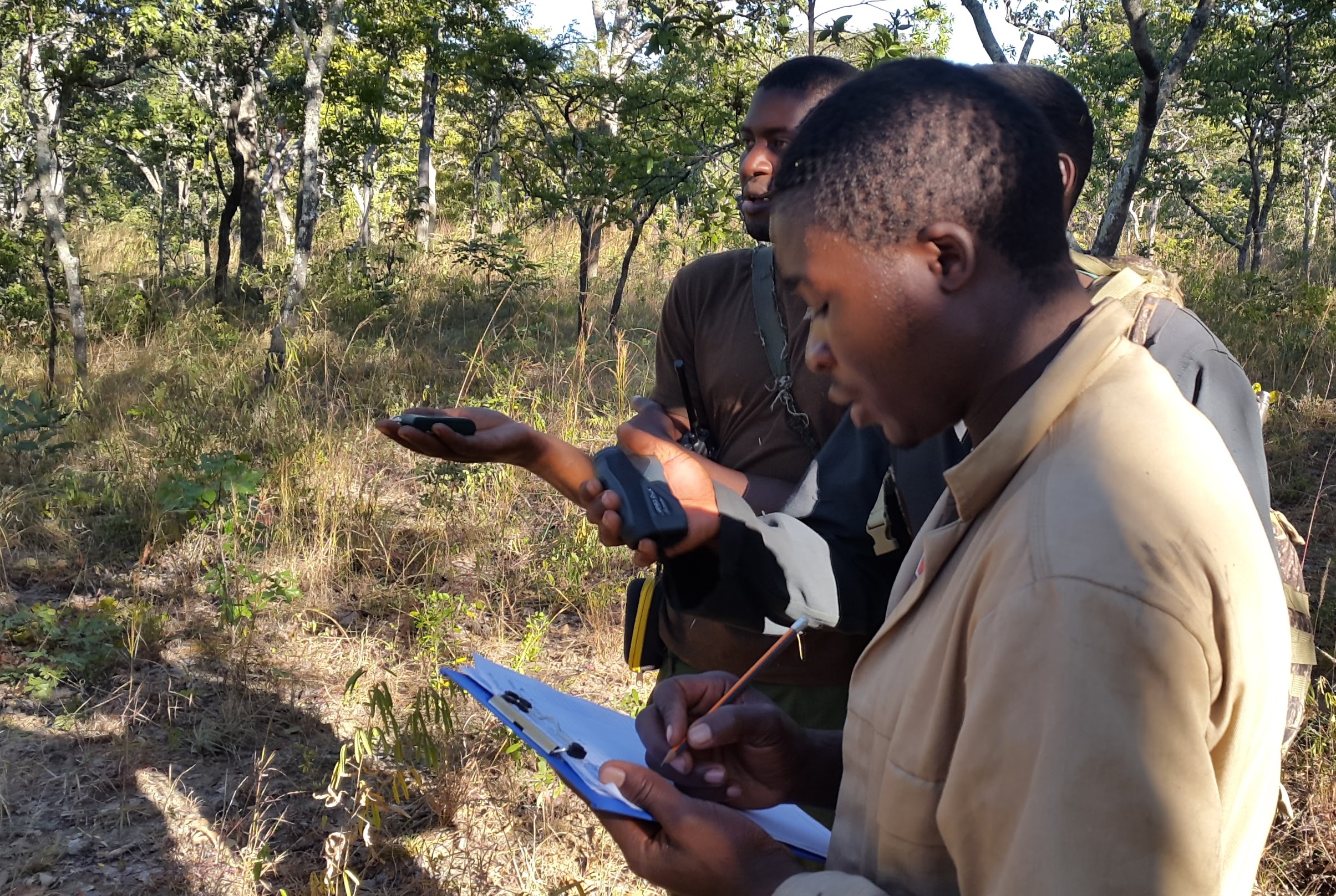 Projects - Wildlife Monitoring
