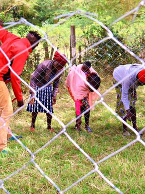 Ngomongo Community Group boma training 5