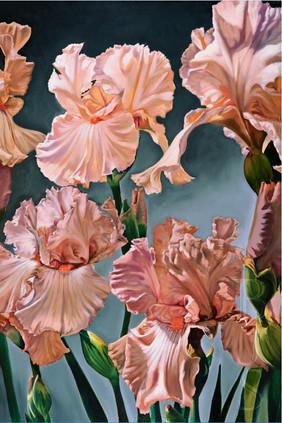 """""""Irises of Vinsetta"""" (left panel)"""
