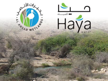 Haya Water Reclaimed Water Lagoons