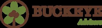 Buckeye_Advisors_logo_RGB.png