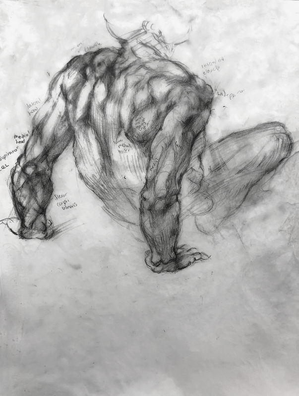 from Michelangelo