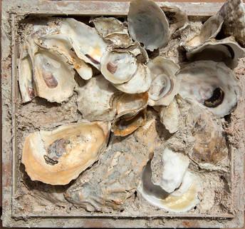 Oyster Epiphany