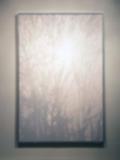 2014.FOLIAGE.SUN.(OFF.WHITE.BROADWICK).H