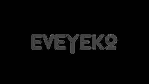 Logo Eveyeko final-sanstagline_Plan de t