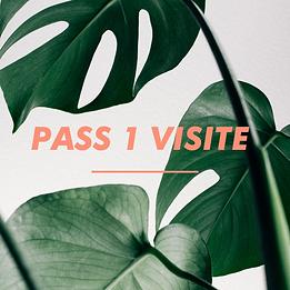 PASS 1 VISITE.png