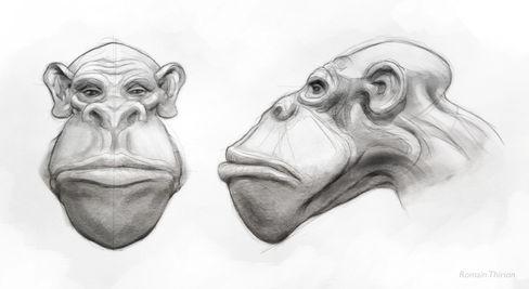 Space Monkey concept Pencil, Photoshop.