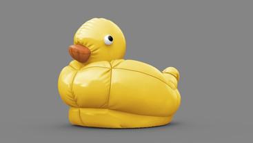 duck_concept_11.jpg