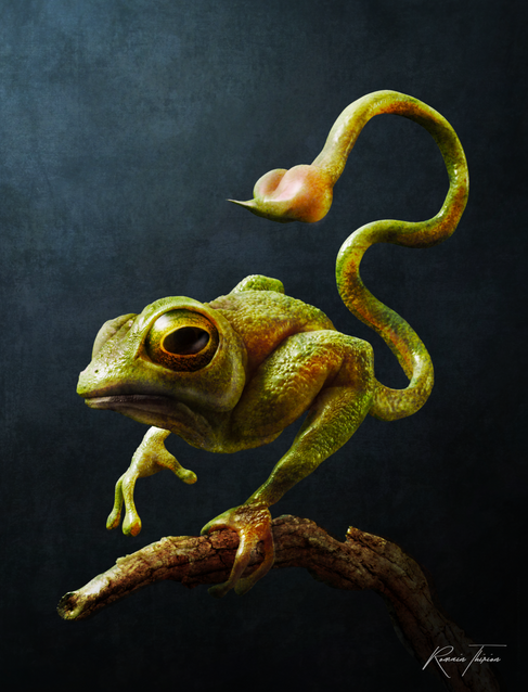 Personal project, Zbrush, Photoshop.