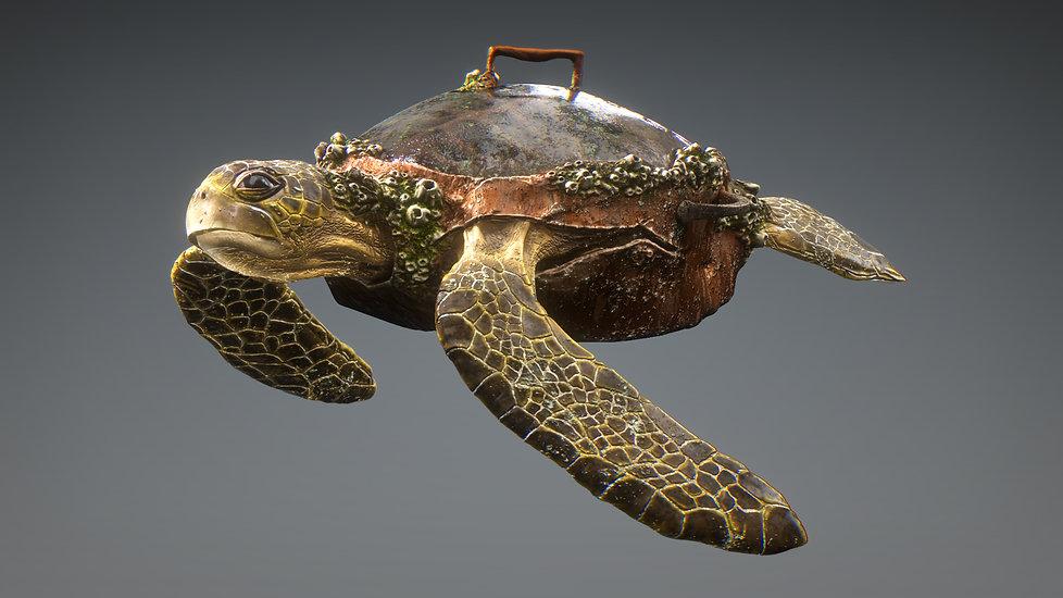 HYB_Turtle.jpg
