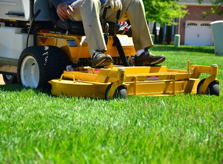 Lawn care In Plainfield, IL