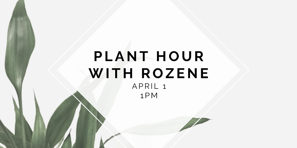 Plant Hour with Rozene