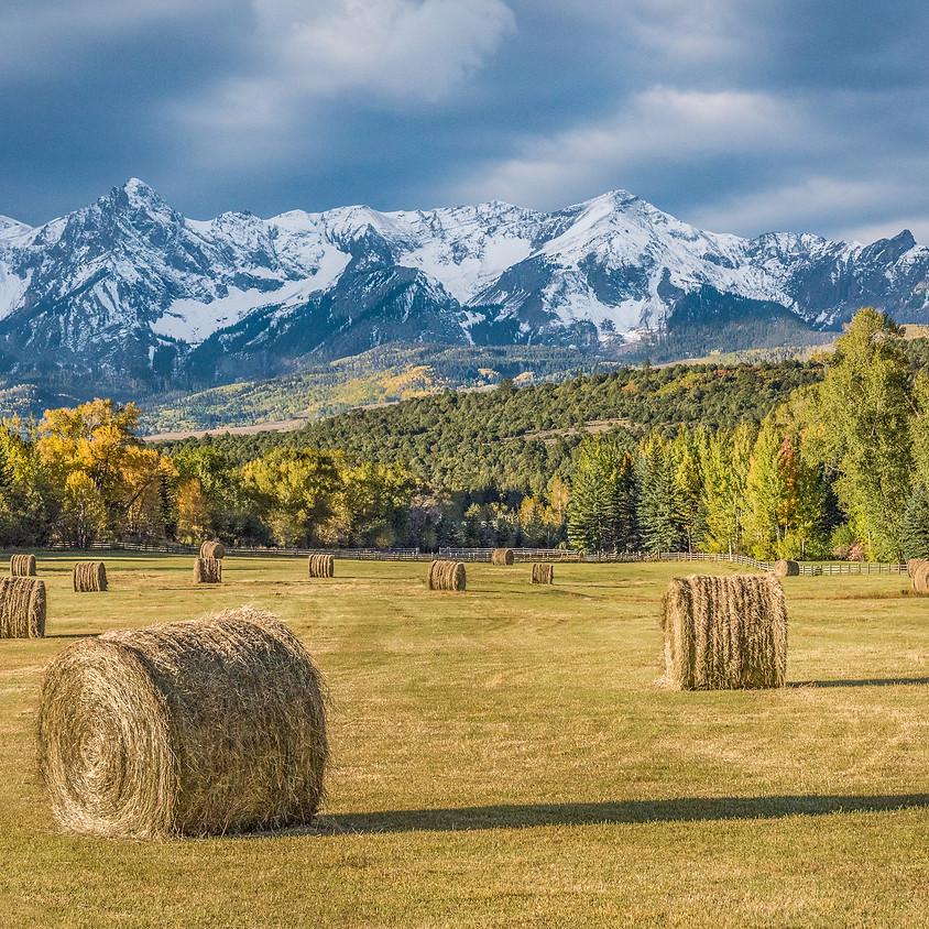 Colorado Fall Color Photography Workshop