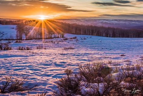Snow Sparkle