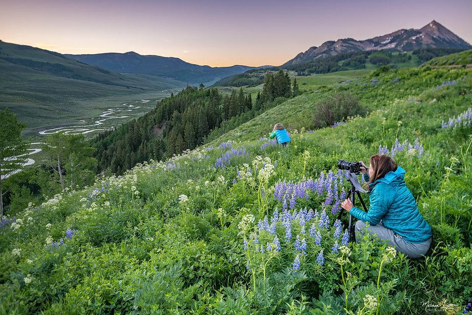 Crested Butte Flower Workshop - Melissa