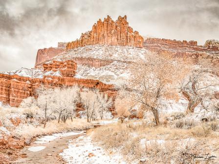 The Snow Castle