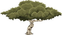 tree-576863_1280.png