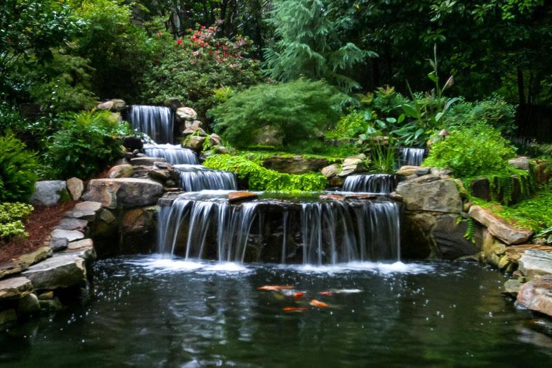 Chalily Ponds U0026 Gardens