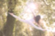 05_ars volandi_aerial hoop.jpg