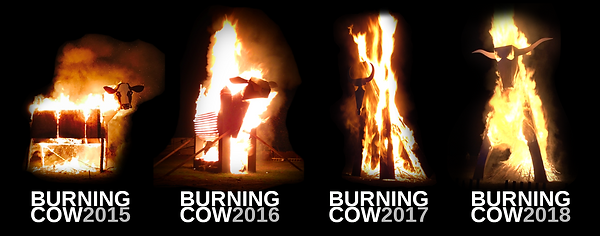 cow_years.png