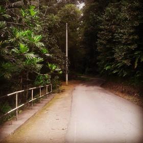 Morne Bleu Road