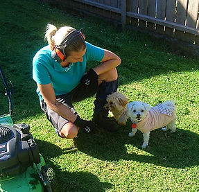 Lawns and Gardening for pet owners, Dog friendly gardeners