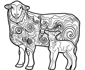 Sheep Decal-01.jpg