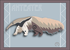 Anteater Note Card