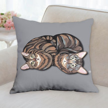 Two Brother Cats Pillow