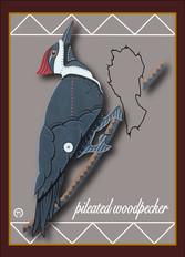 Pileated Woodpecker Note Card 2.jpg