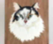 2 Cat 26.jpg