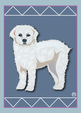 White Curly Dog Note Card.jpg