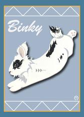 Bunny Binky Note Card