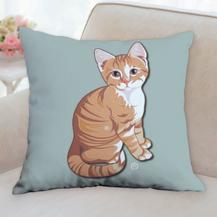 Orange Kitty Pillow
