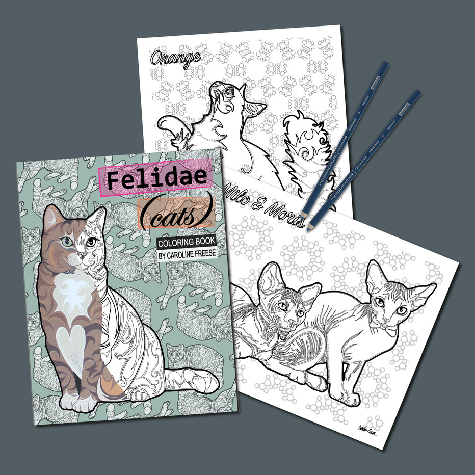 Felidae Cats Coloring Book