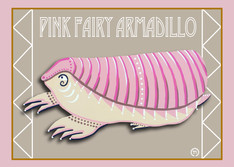 Pink Fairy Armadillo Note Card