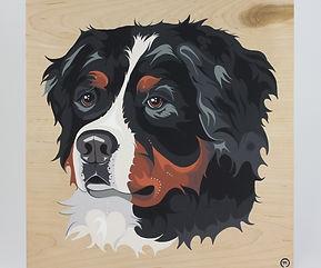 Bernese Mountain Dog 3 ✔️.jpeg